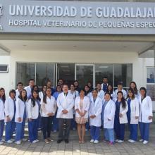 Practicas profesionales Hospital Veterinario1