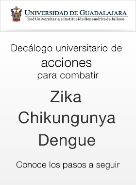 zika y chikungunya