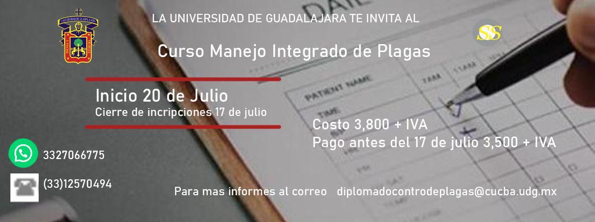 plagas_julio