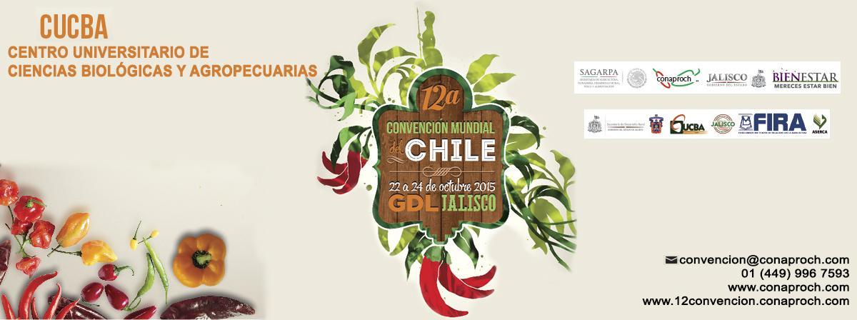 convención del chile