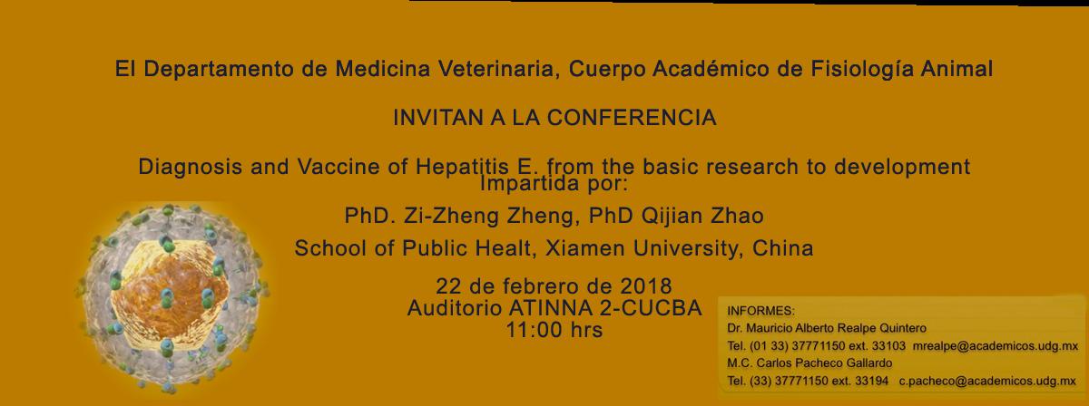 Conferencia Hepatitis