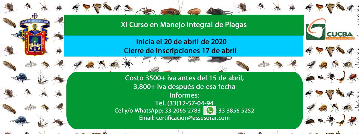 Curso_plagas
