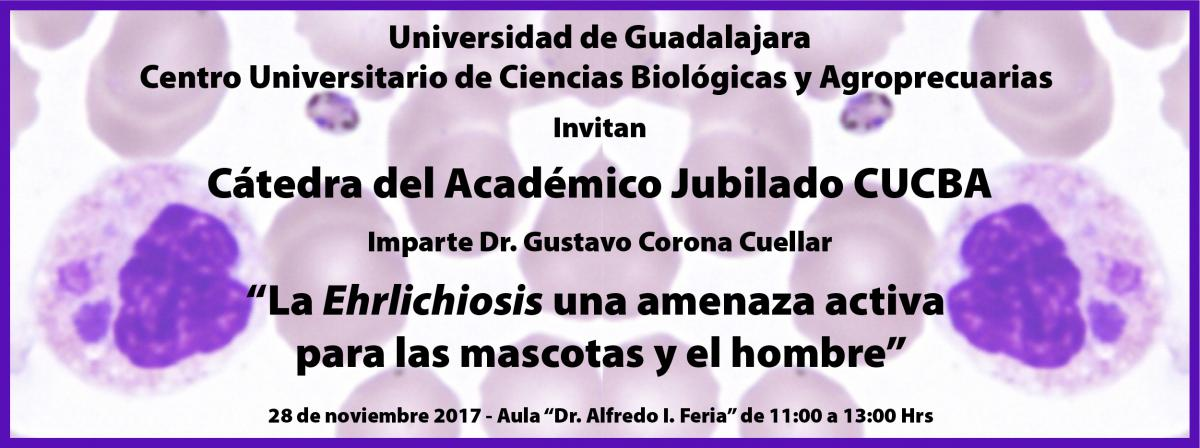 catedra_jubilados