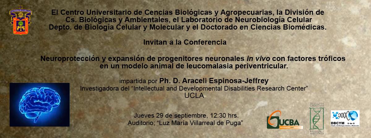 Dra. Araceli Espinosa-Jeffrey
