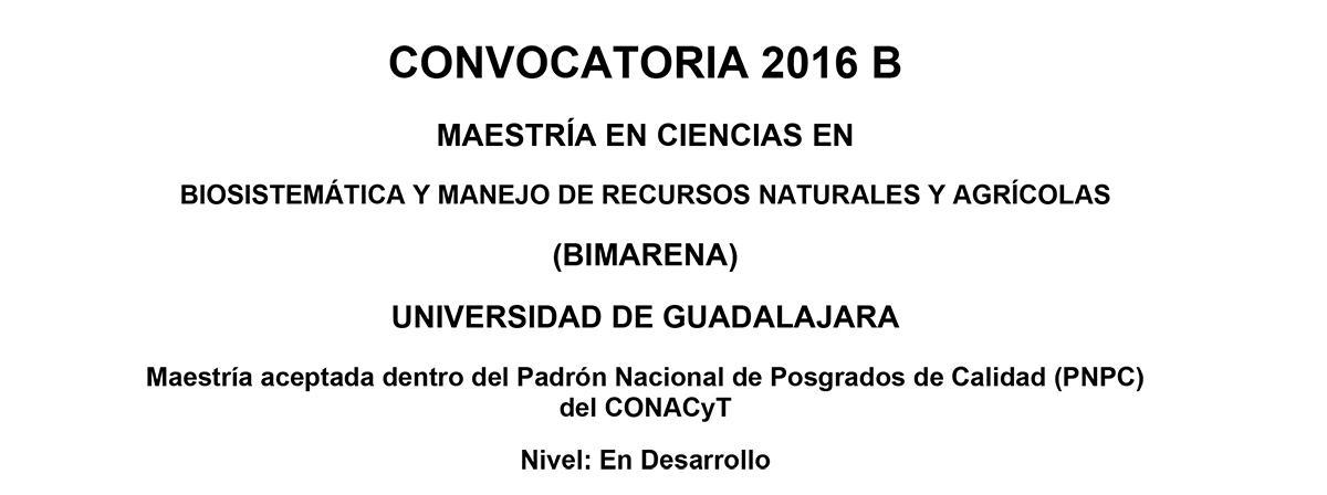 convocatoria 2016 B