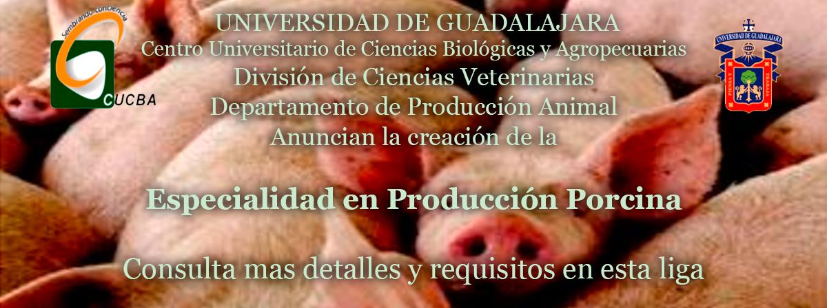 especialidad_en_cerdos