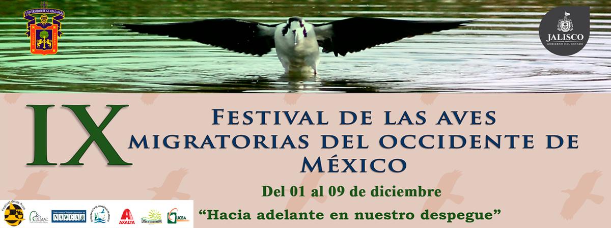 festival_aves2017
