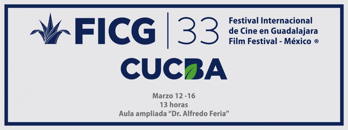 FICG 33