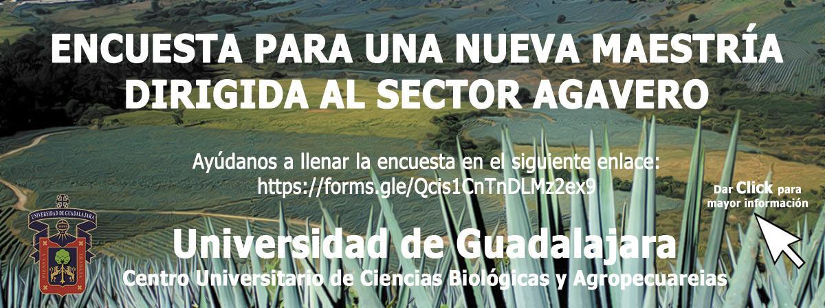 publicidad_maestria_sectoragavero